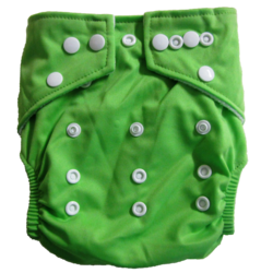 Hippybottomus Stay Dry Bamboo Cloth Nappy - Green